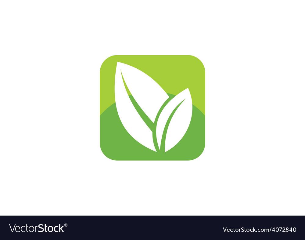 Leaf icon square social media logo vector | Price: 1 Credit (USD $1)