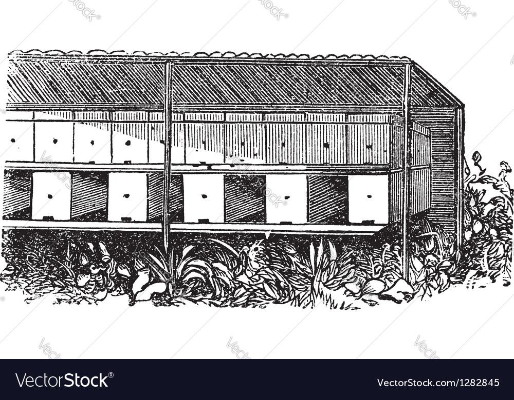 Apiary or bee yard vintage engraving vector   Price: 1 Credit (USD $1)