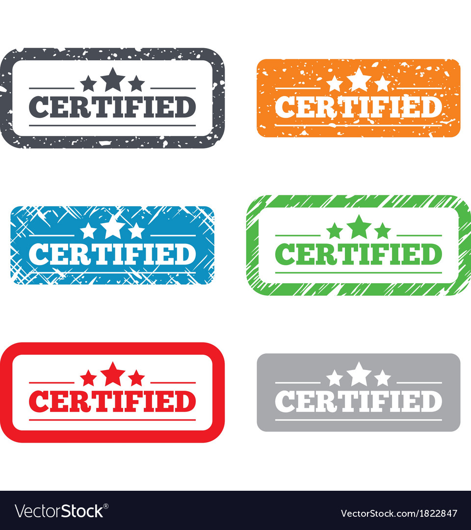 Certified sign icon checked symbol vector | Price: 1 Credit (USD $1)