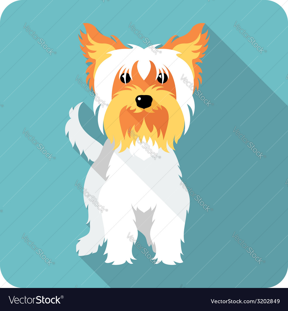 Dog yorkshire terrier standing icon flat design vector | Price: 1 Credit (USD $1)
