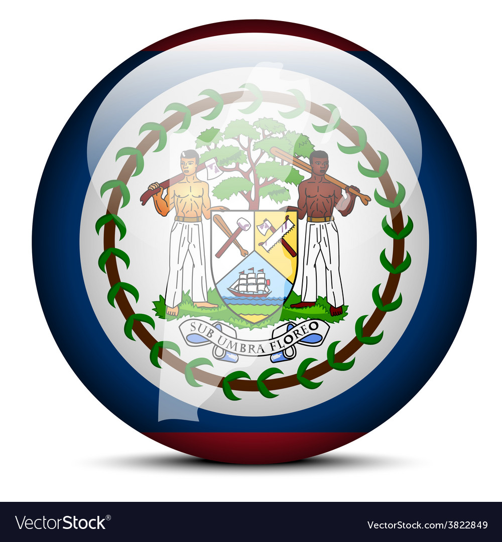 Map on flag button of belize vector