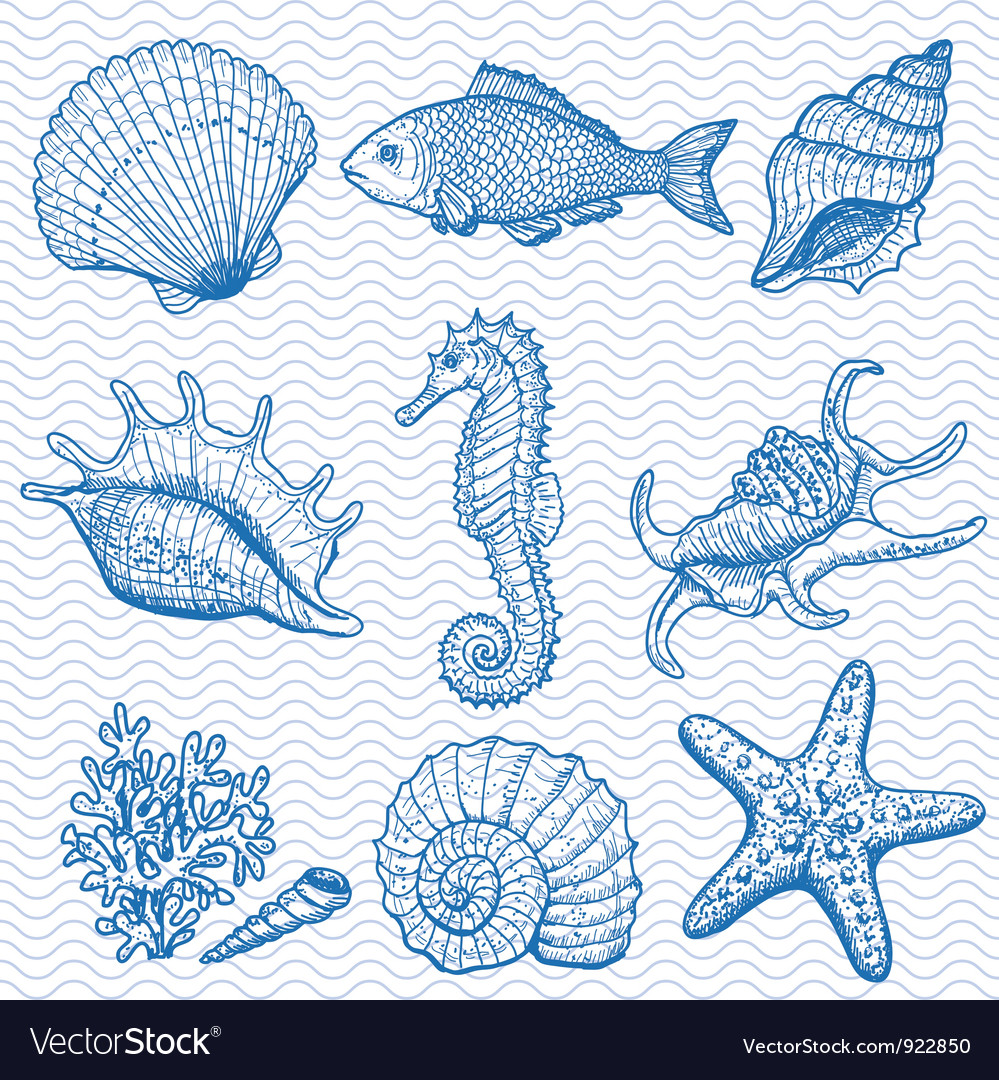 Sea hand drawn vector | Price: 1 Credit (USD $1)
