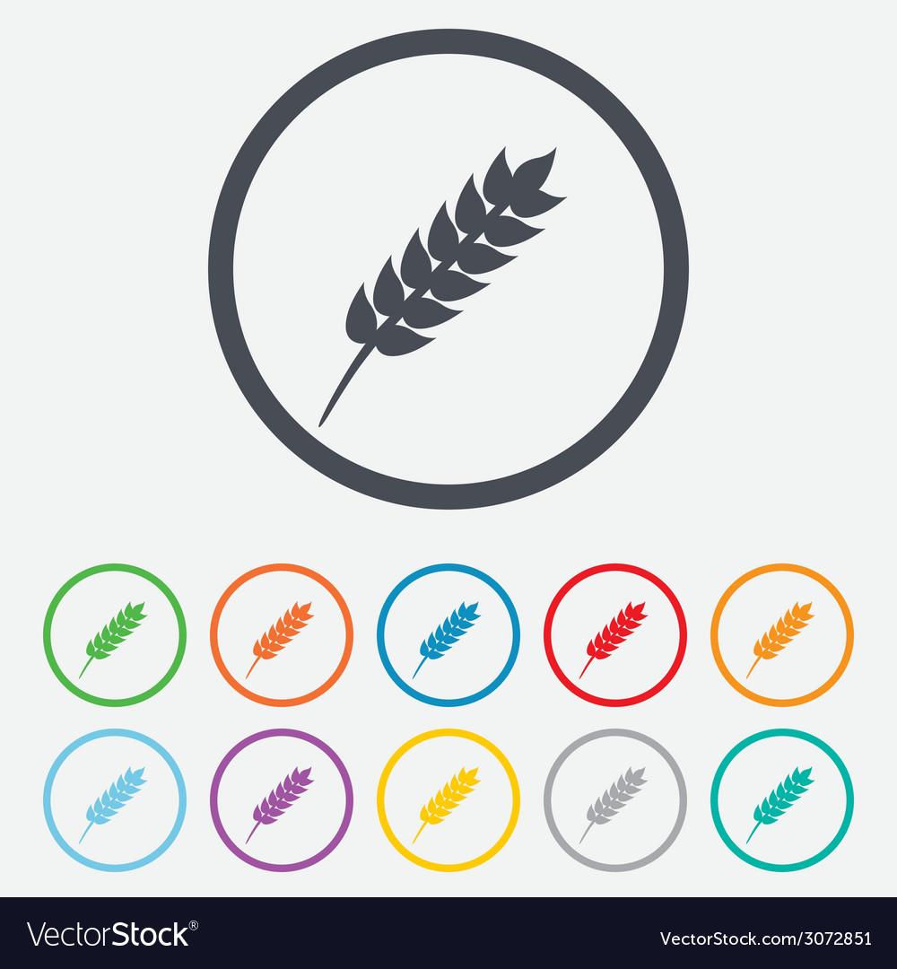 Gluten free sign icon no gluten symbol vector | Price: 1 Credit (USD $1)