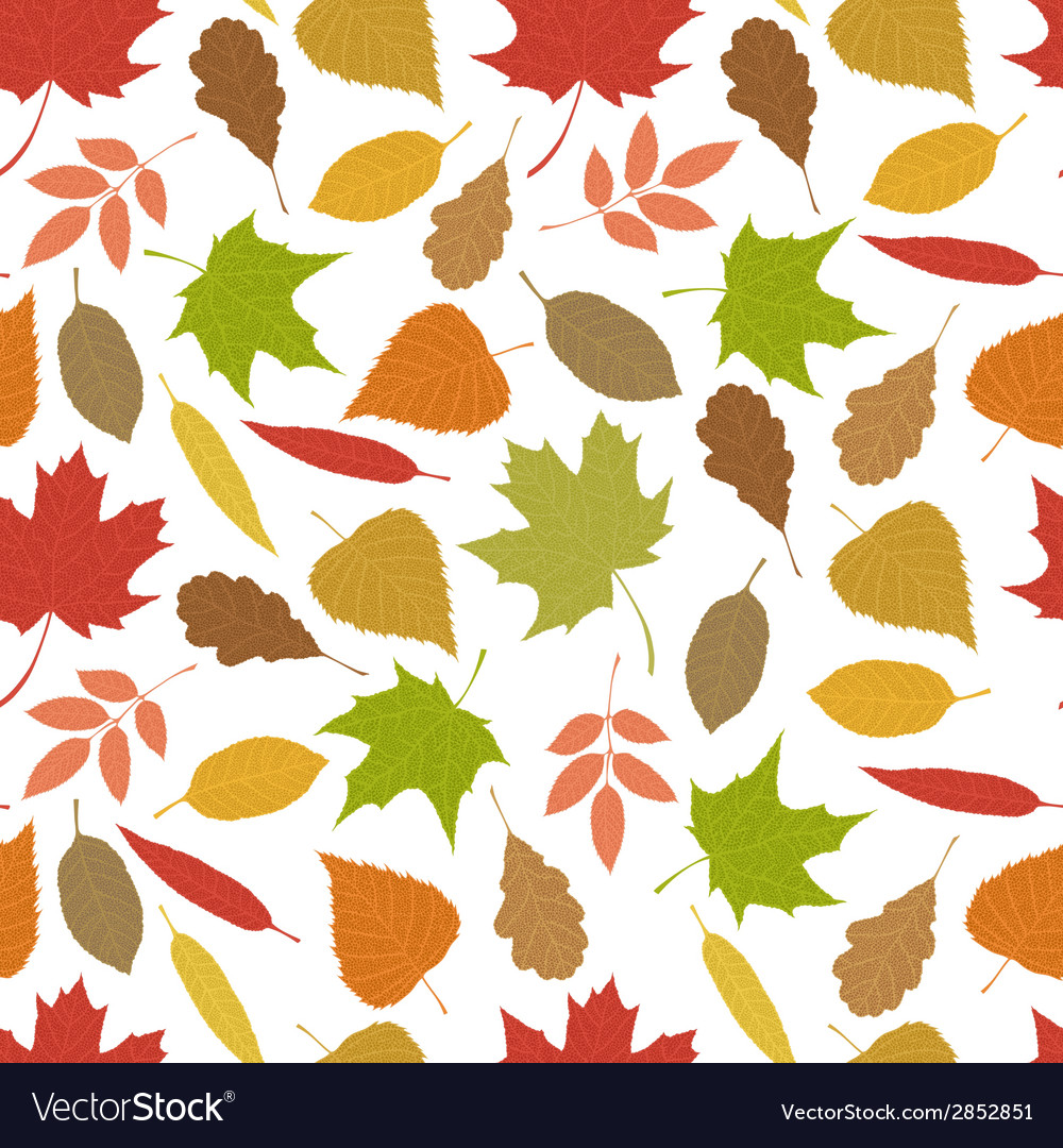 Seamless pattern of autumn leaves vector | Price: 1 Credit (USD $1)