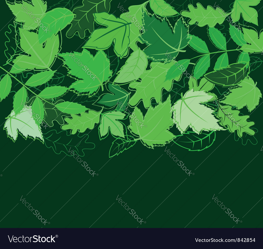 Spring leaves background vector | Price: 1 Credit (USD $1)