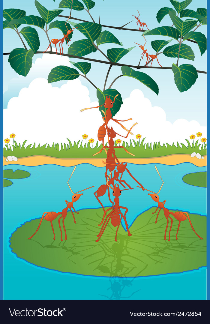 Tolerance of ants vector | Price: 1 Credit (USD $1)
