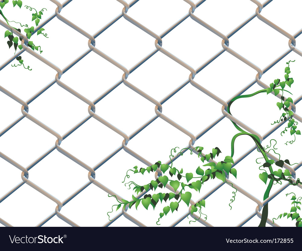 Barbed wire with ivy vector | Price: 1 Credit (USD $1)