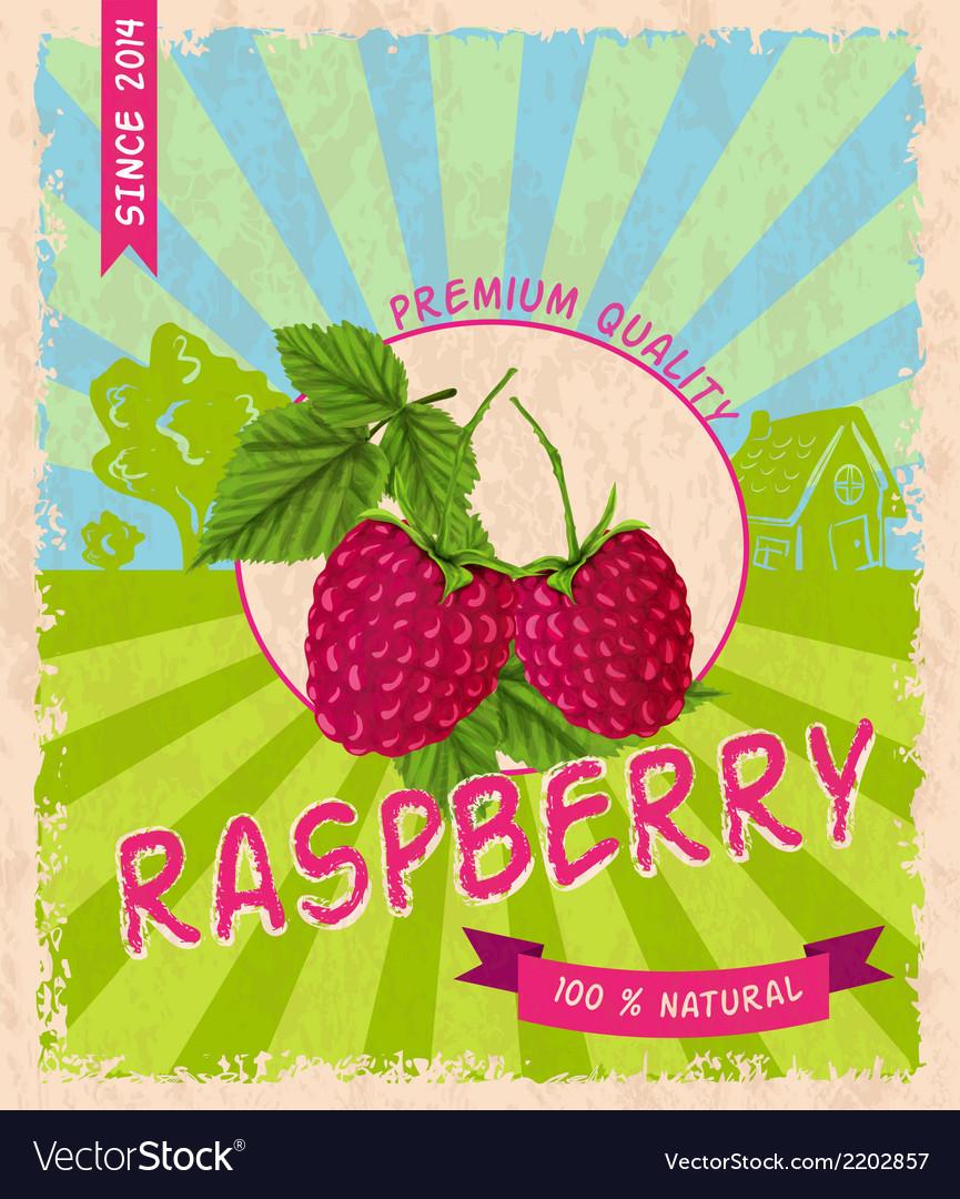 Raspberry retro poster vector | Price: 1 Credit (USD $1)