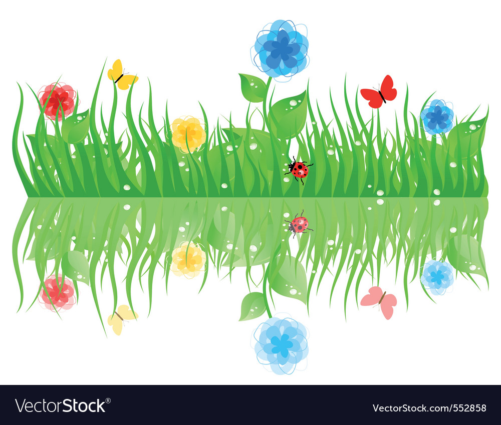 Grass with flowers a vector illustration vector | Price: 1 Credit (USD $1)