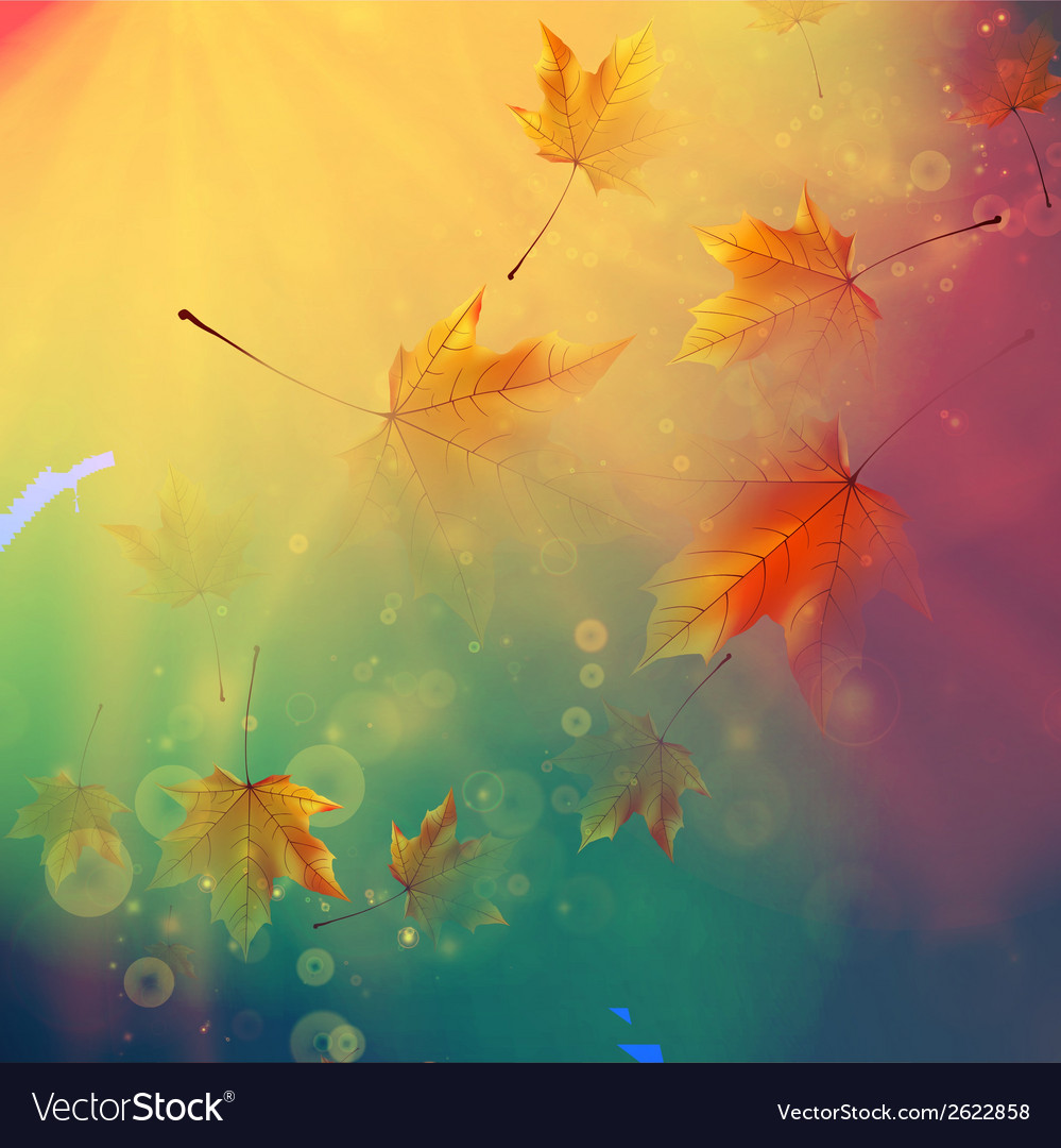 Orange maple leaves autumn concept vector | Price: 1 Credit (USD $1)