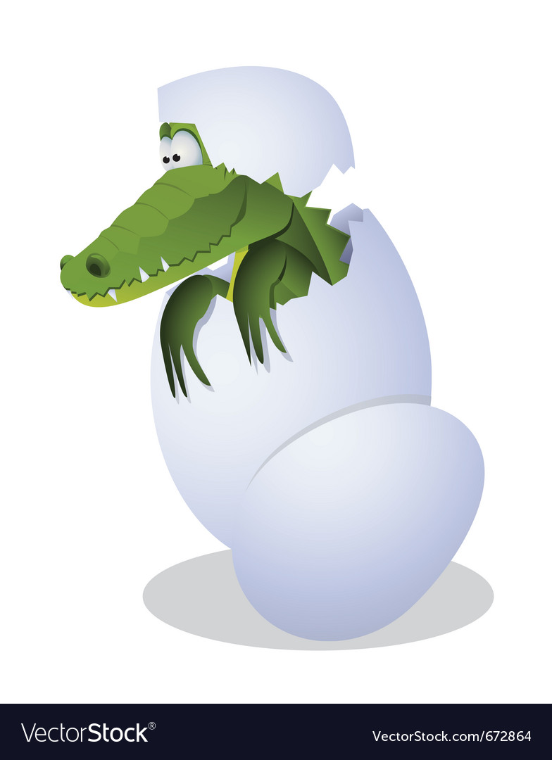 Funny crocodile hatched from eggs vector | Price: 1 Credit (USD $1)