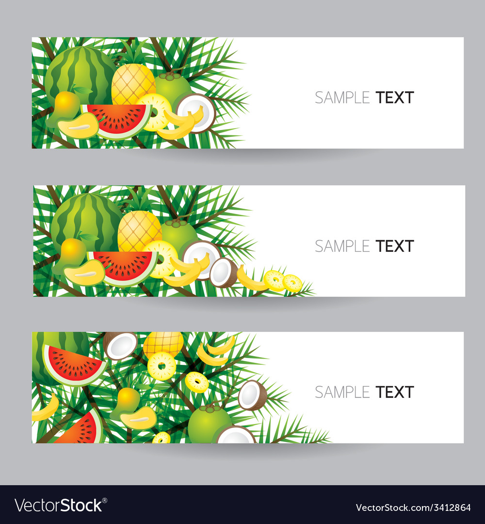 Mixed tropical fruits banner vector | Price: 1 Credit (USD $1)