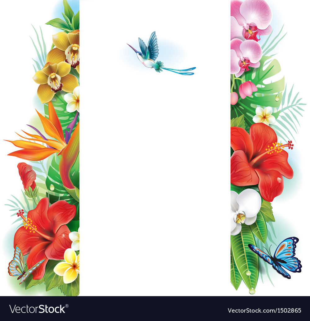 Banner from tropical flowers and leaves vector | Price: 1 Credit (USD $1)