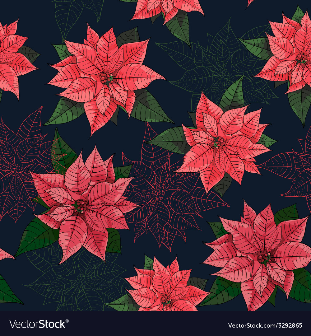 Poinsettia flower background for invitation card vector | Price: 1 Credit (USD $1)