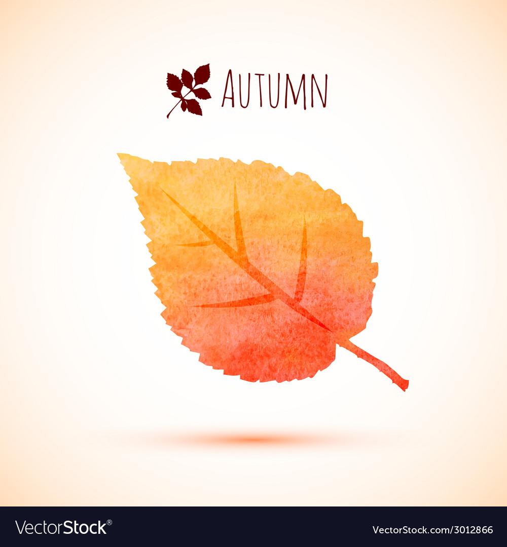 Autumn orange watercolor leaf icon vector | Price: 1 Credit (USD $1)