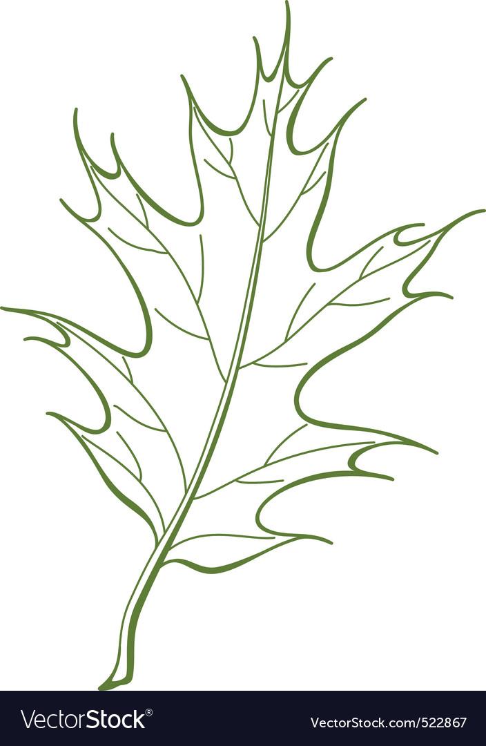 F oak iberian vector vector   Price: 1 Credit (USD $1)