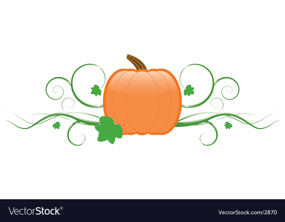 Pumpkin and vines vector | Price: 1 Credit (USD $1)
