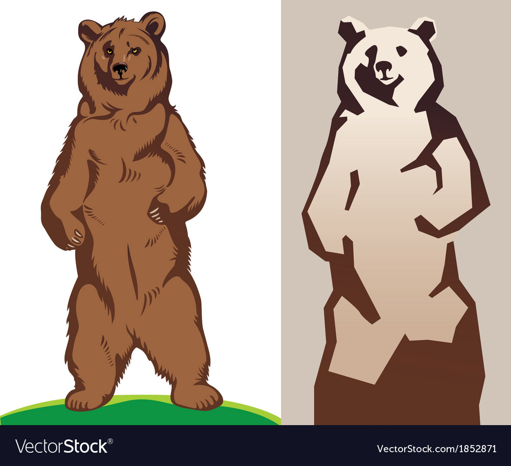 A bear vector | Price: 1 Credit (USD $1)
