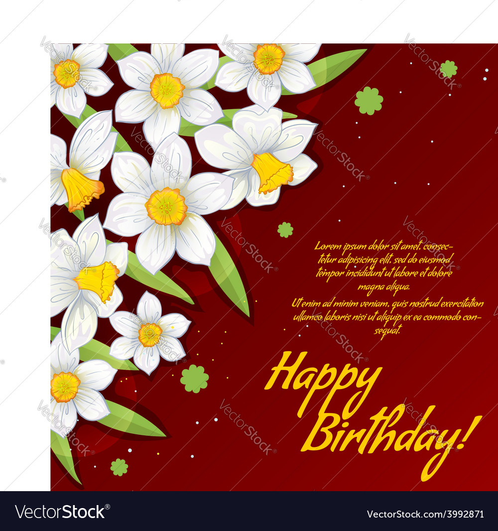 Floral decorative card with white narcissus vector