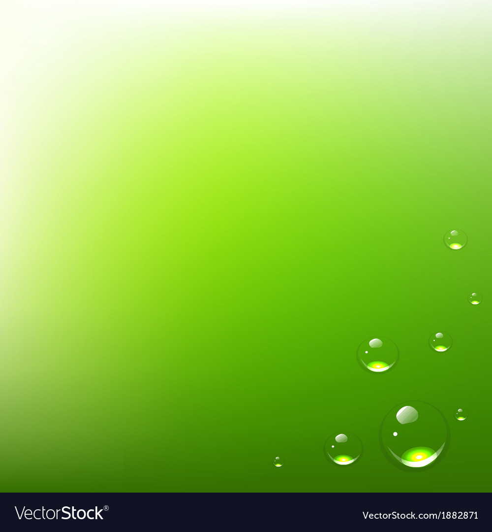 Green background with water drops vector | Price: 1 Credit (USD $1)