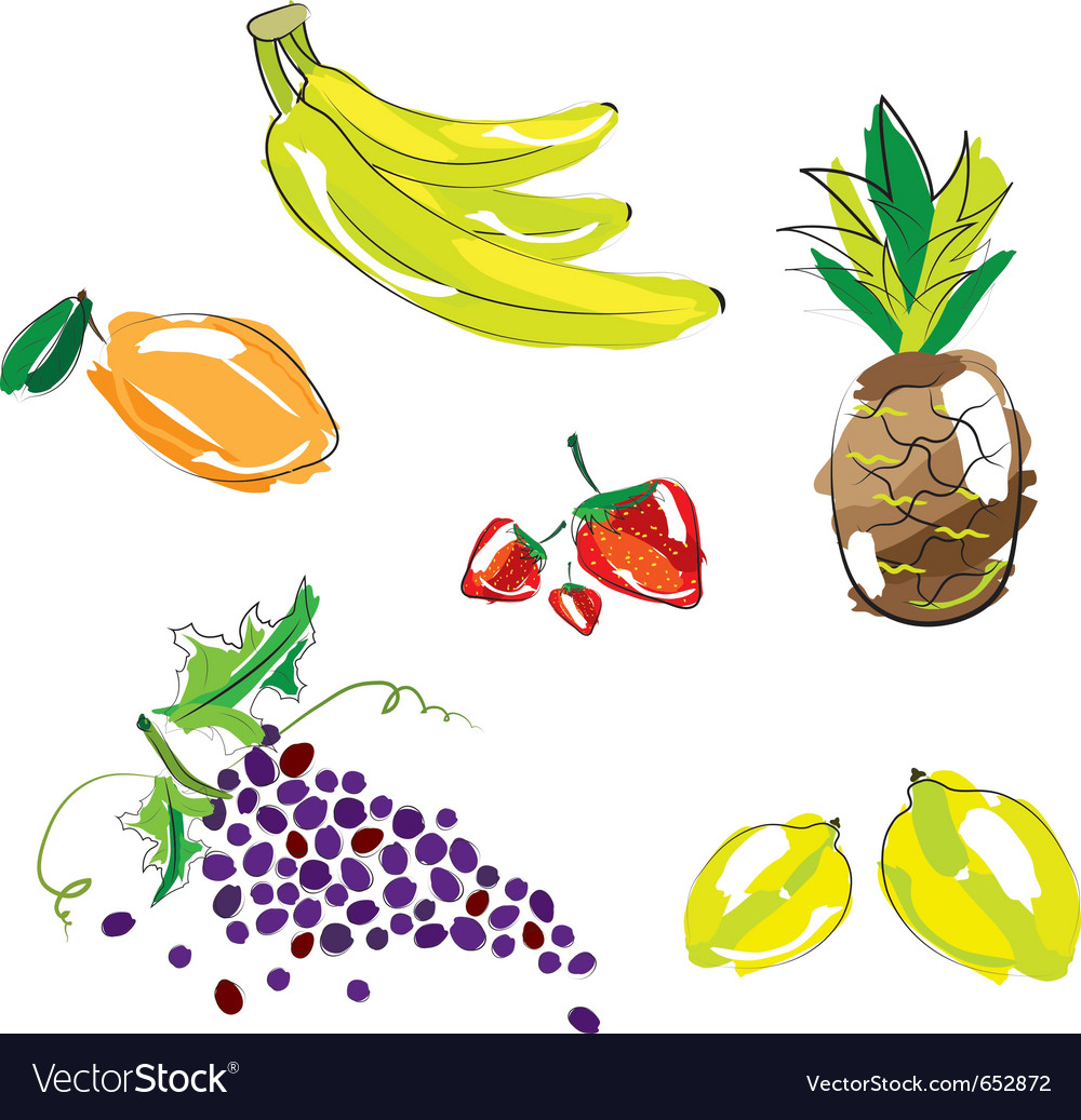 Hand sketched fruit vector | Price: 1 Credit (USD $1)