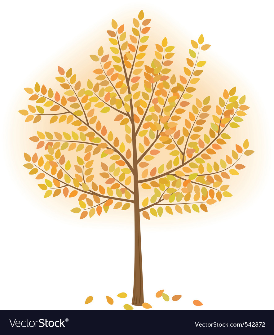 Stylized autumn tree vector | Price: 1 Credit (USD $1)