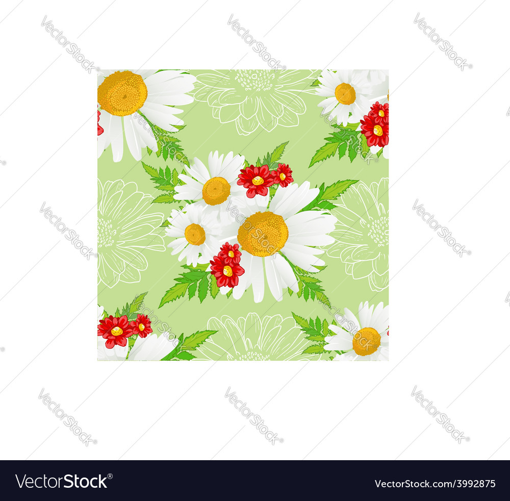 Floral seamless background with white chamomiles vector | Price: 1 Credit (USD $1)
