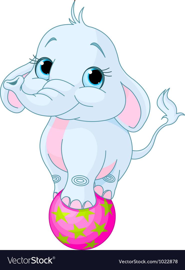 Circus elephant vector | Price: 3 Credit (USD $3)