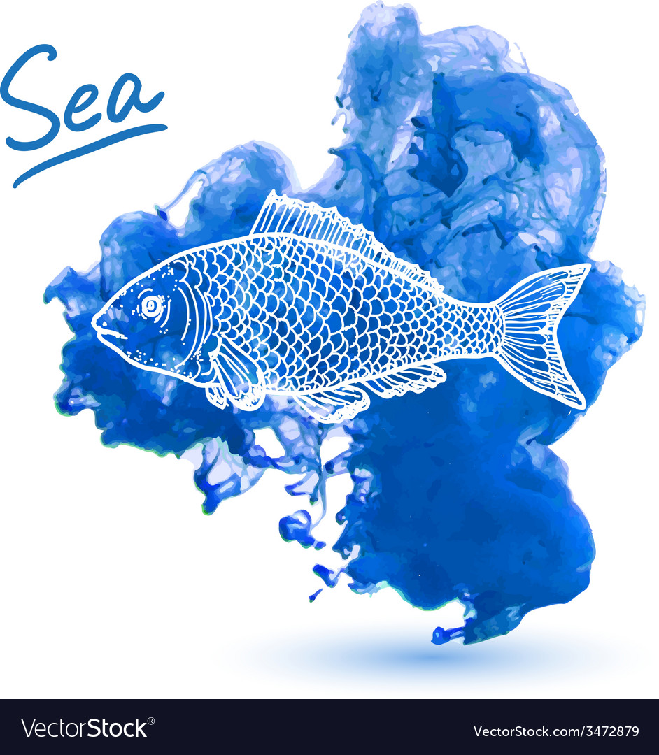 Sea fish vector | Price: 1 Credit (USD $1)