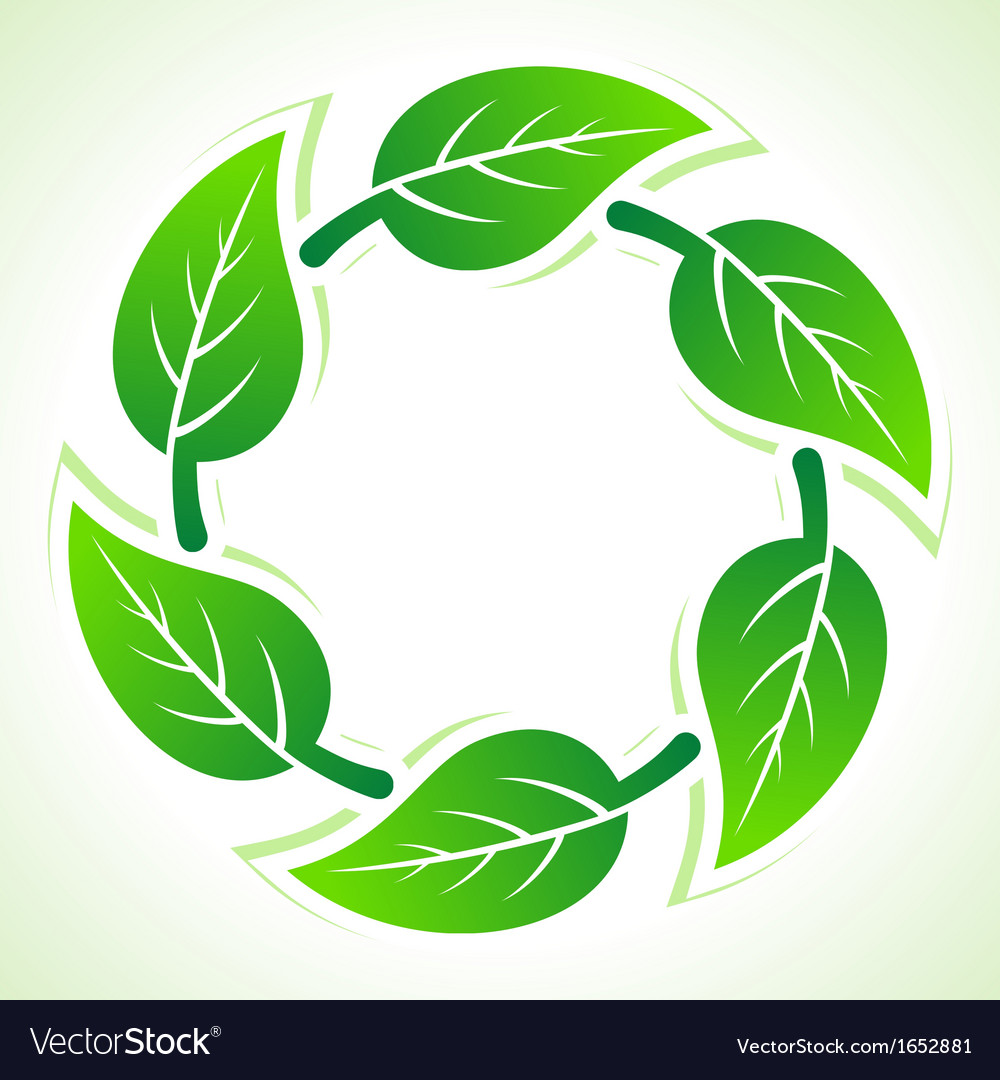 Green leaves pattern background vector