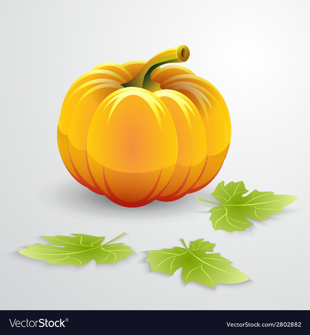 Orange pumpkin and green leaves vector | Price: 1 Credit (USD $1)