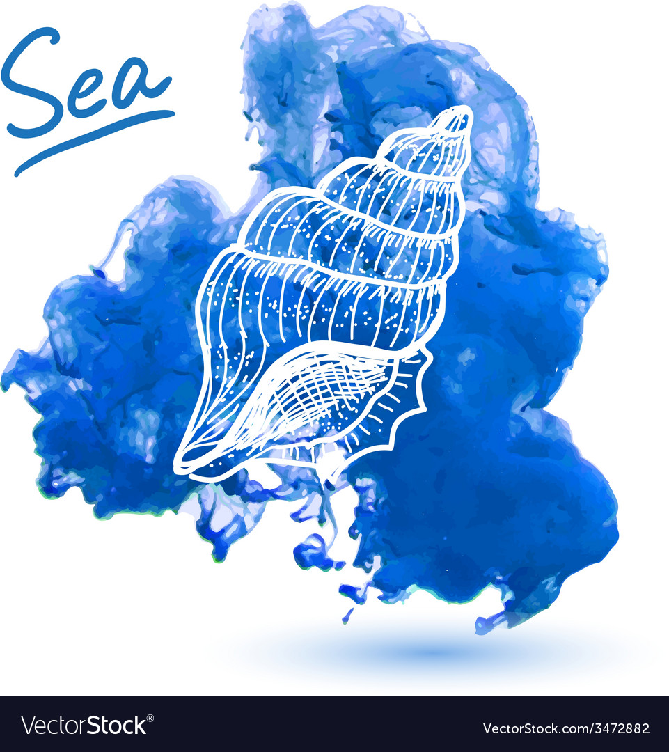 Sea shell vector | Price: 1 Credit (USD $1)