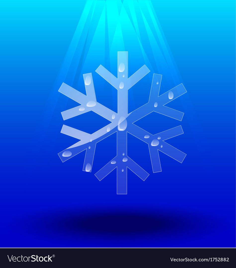 Snowflakes crystal vector   Price: 1 Credit (USD $1)