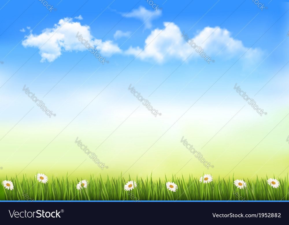 Summer nature background with green grass and sky vector | Price: 1 Credit (USD $1)