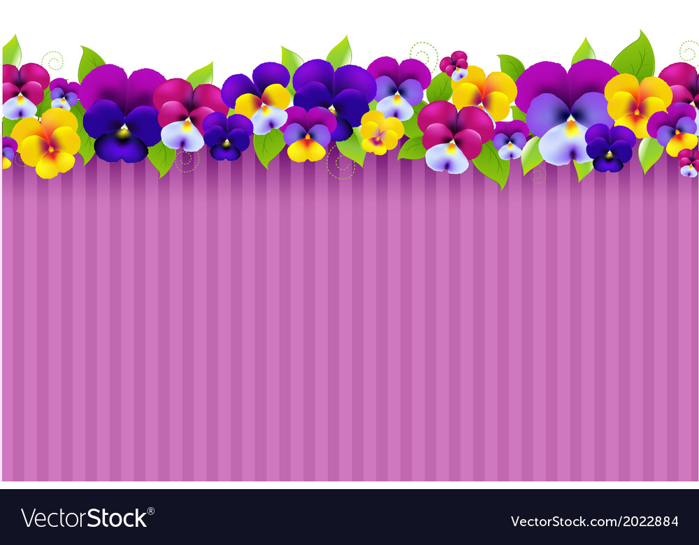 Background with colorful pansies vector | Price: 1 Credit (USD $1)