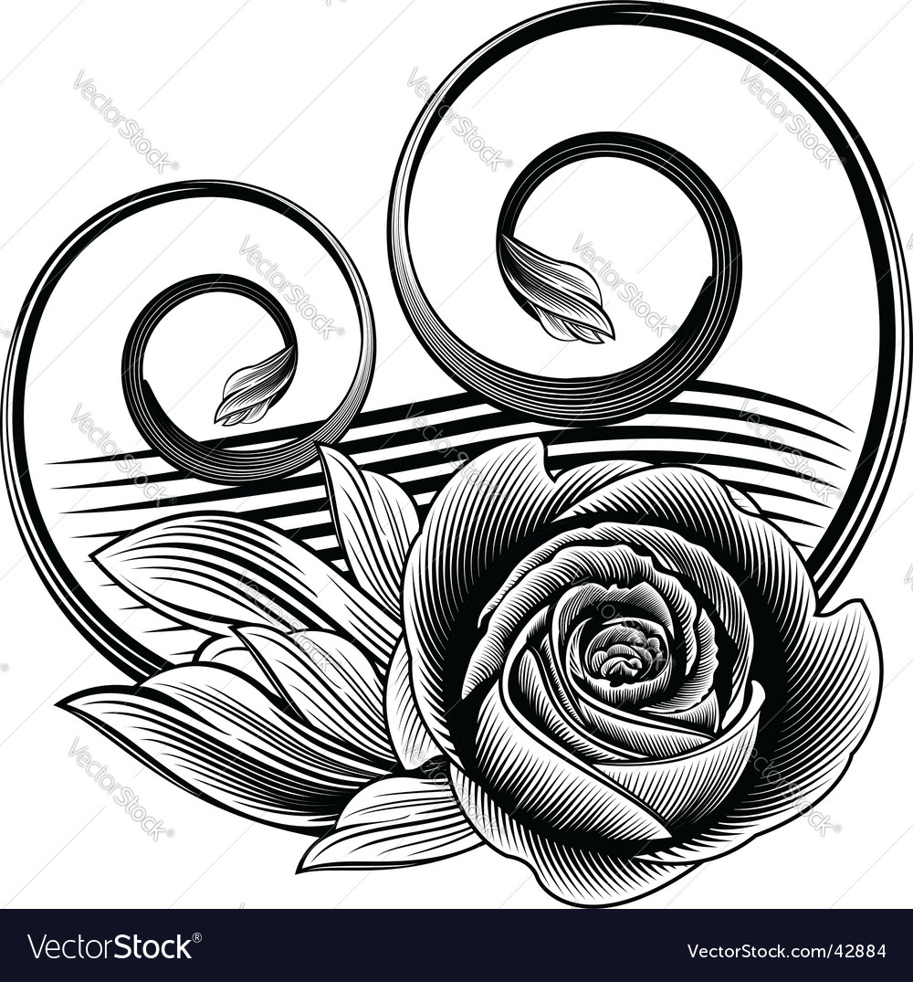 Ornamental rose vector | Price: 1 Credit (USD $1)