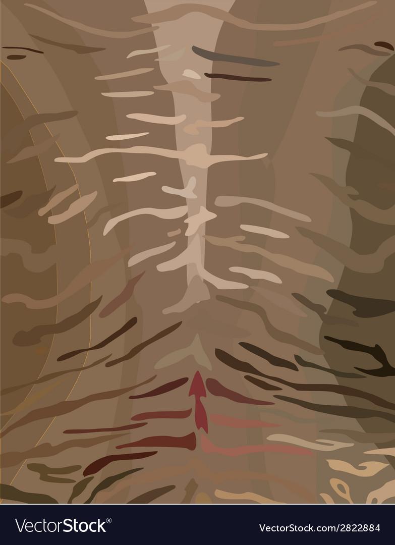 Tiger skinstripes vector | Price: 1 Credit (USD $1)