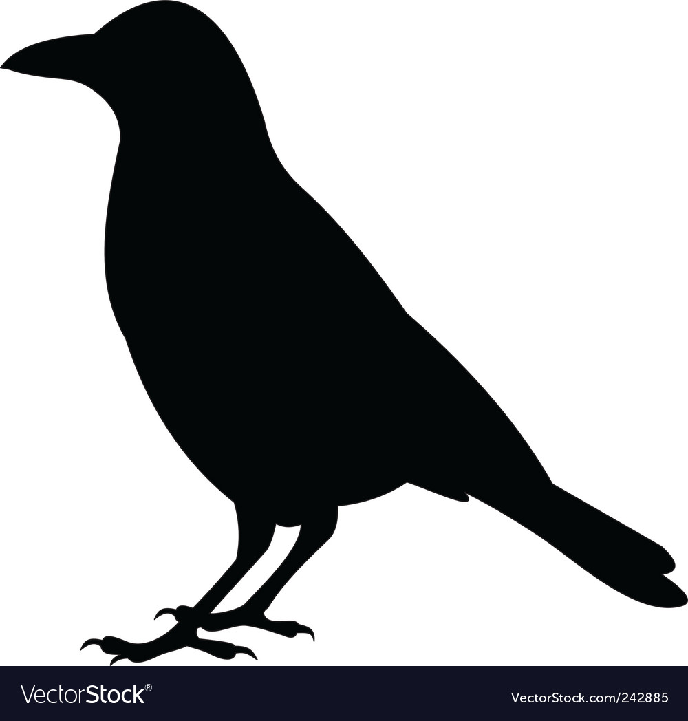 Raven vector | Price: 1 Credit (USD $1)