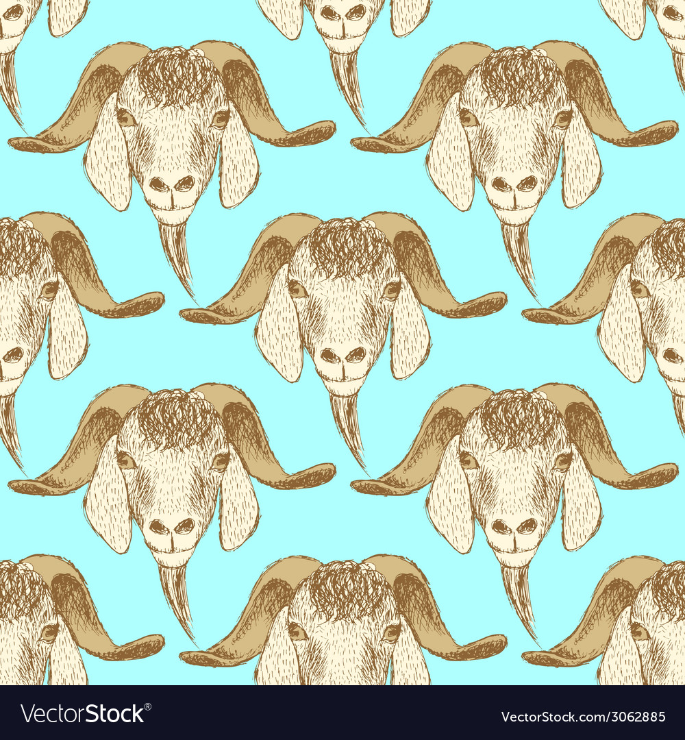 Sketch cute goat head in vintage style vector | Price: 1 Credit (USD $1)