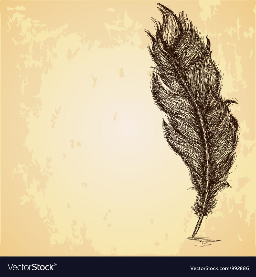 Sketch of the feather on grungy texture vector | Price: 1 Credit (USD $1)