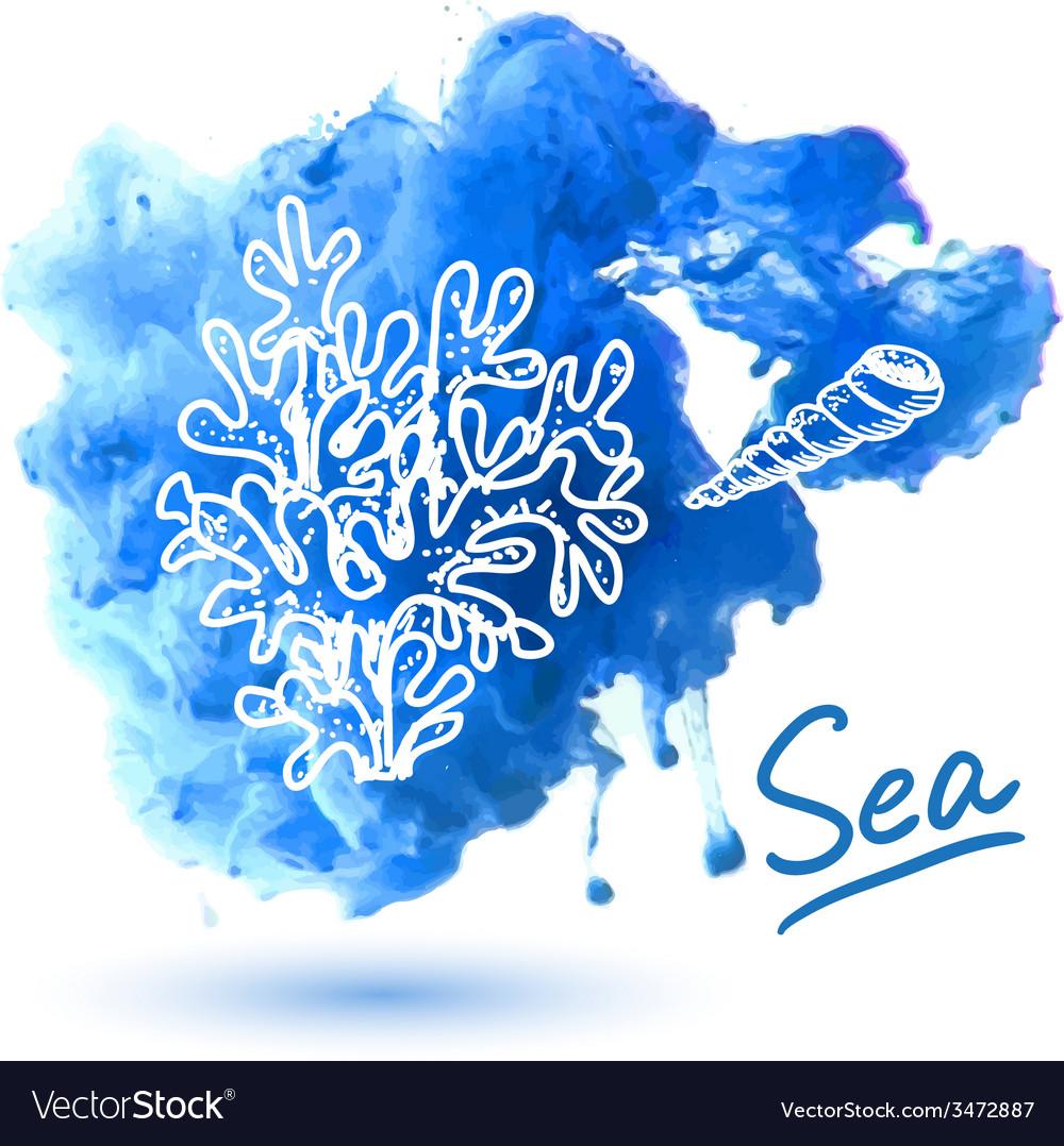 Sea shell vector   Price: 1 Credit (USD $1)