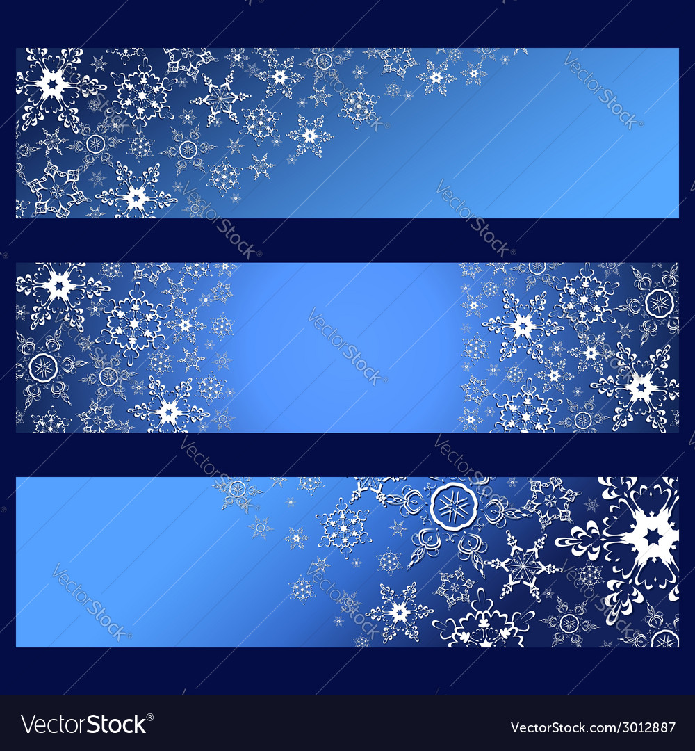 Set of banners with decorative 3d snowflakes vector | Price: 1 Credit (USD $1)