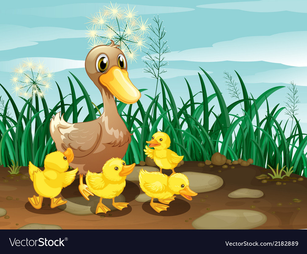 A duck and her ducklings near the grassland vector | Price: 1 Credit (USD $1)