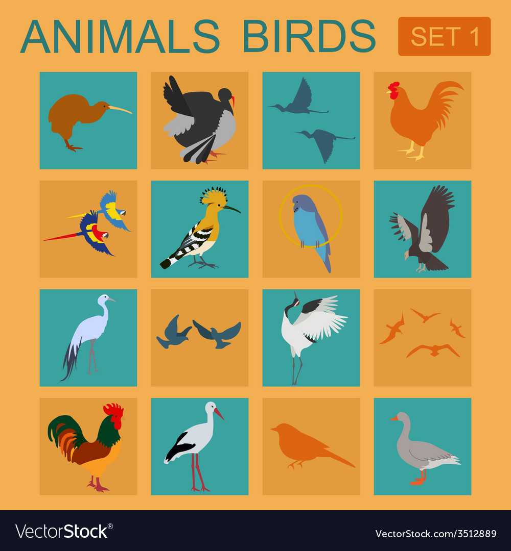 Birds icon set flat style vector | Price: 1 Credit (USD $1)