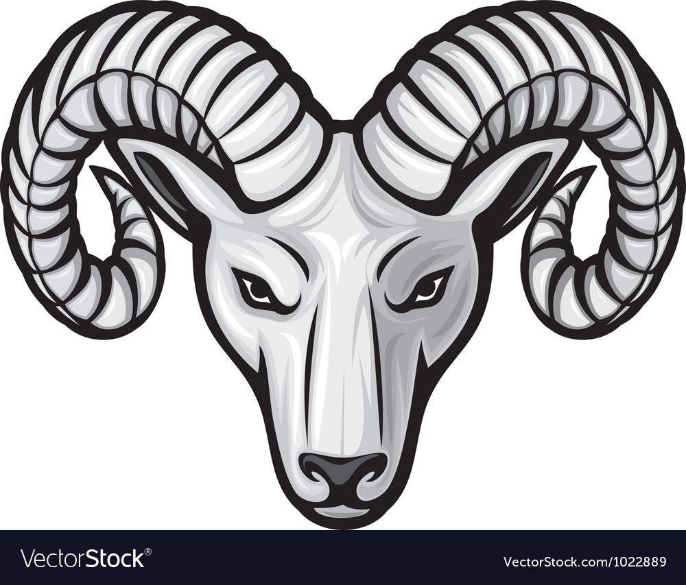 Head of the ram - ram head vector | Price: 1 Credit (USD $1)