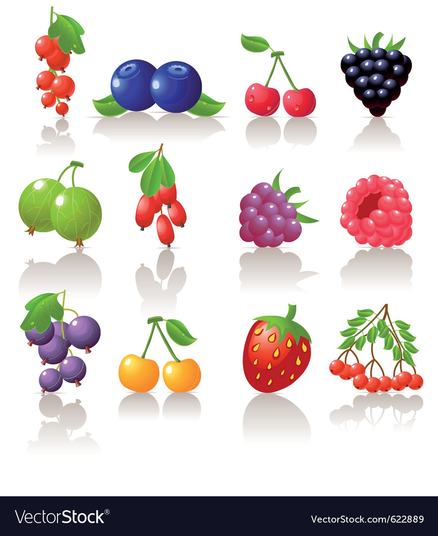 Set of berry icons vector | Price: 3 Credit (USD $3)