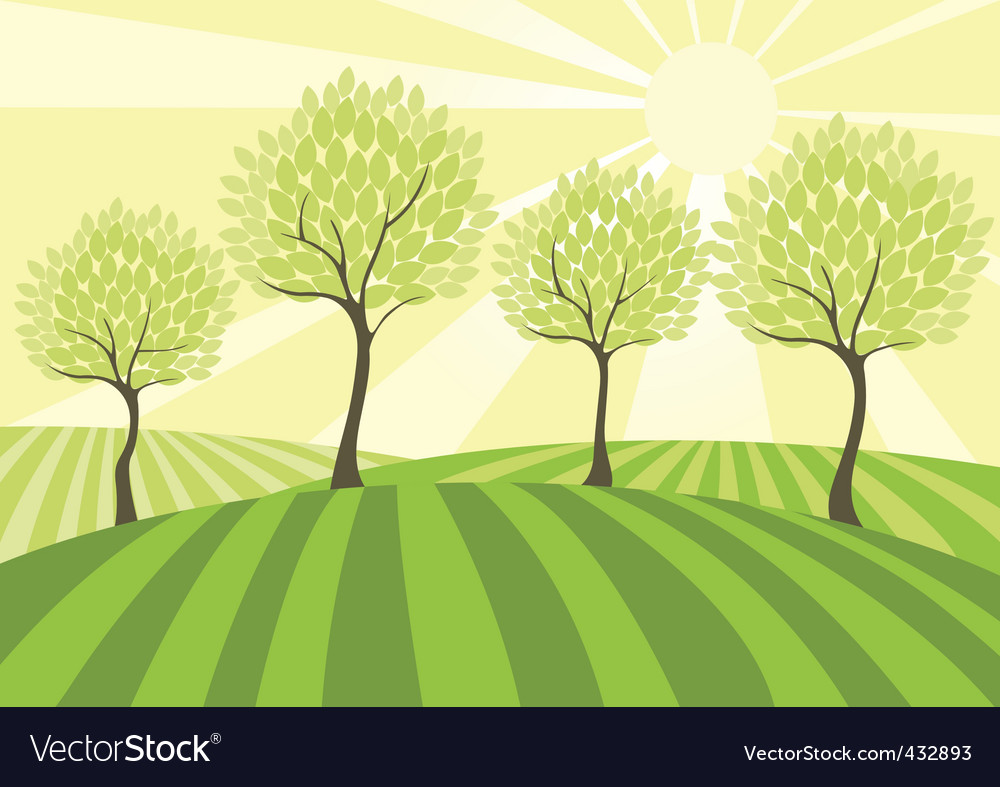 Country field vector | Price: 1 Credit (USD $1)