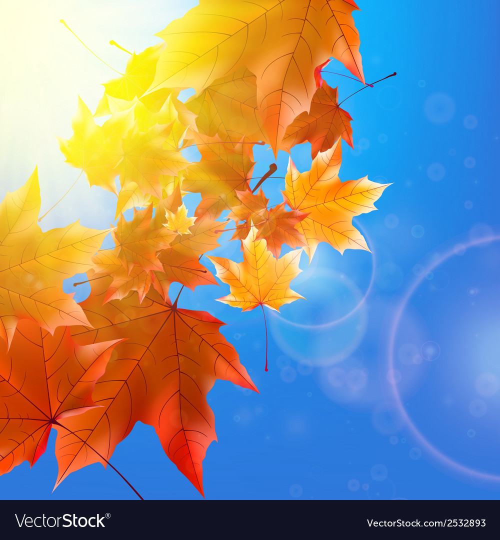 Delicate autumn sun with glare on blue sky vector | Price: 1 Credit (USD $1)