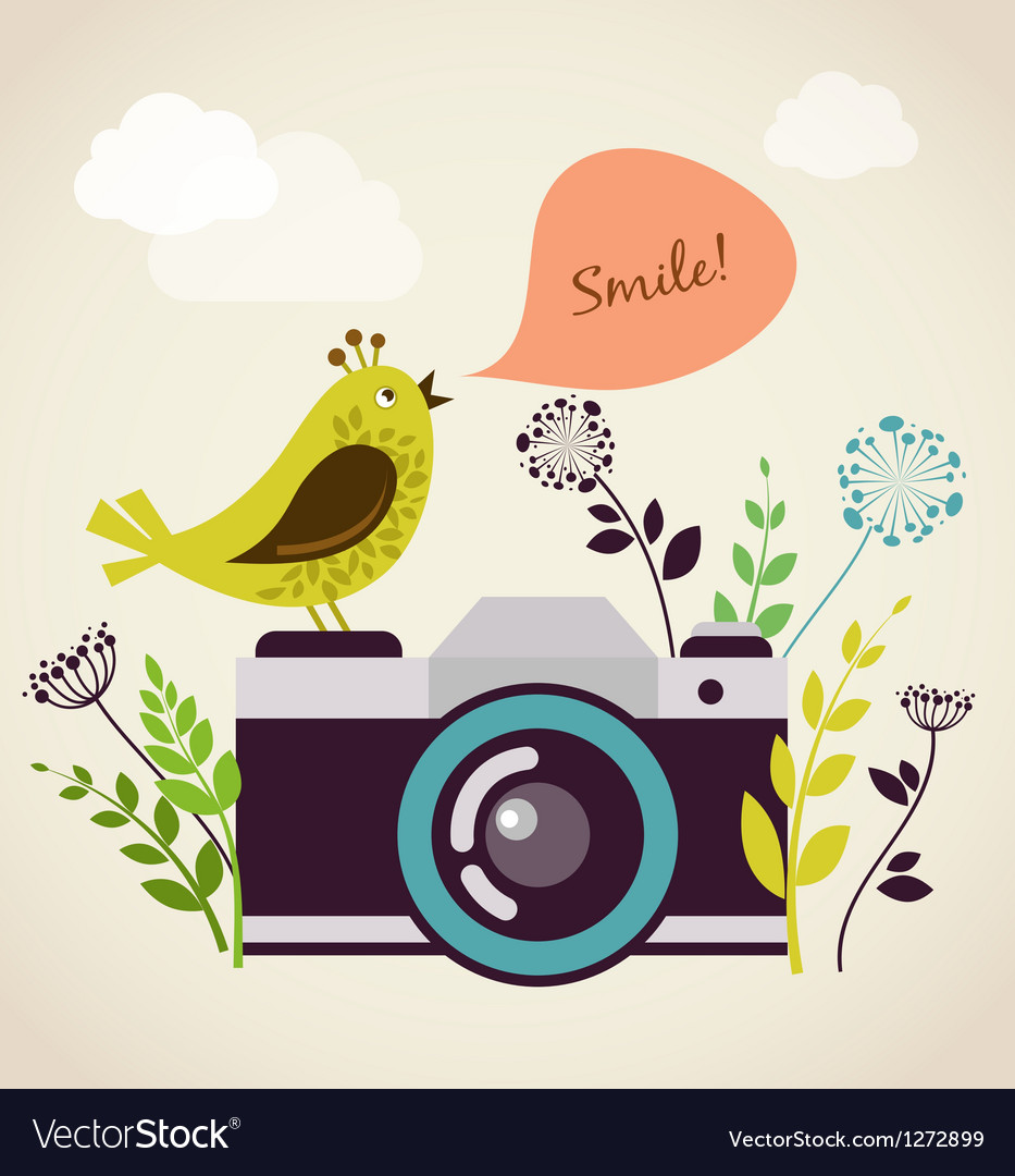 Old vintage camera with bird vector | Price: 1 Credit (USD $1)