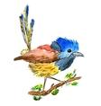 Abstract watercolor hand-drawn bird vector